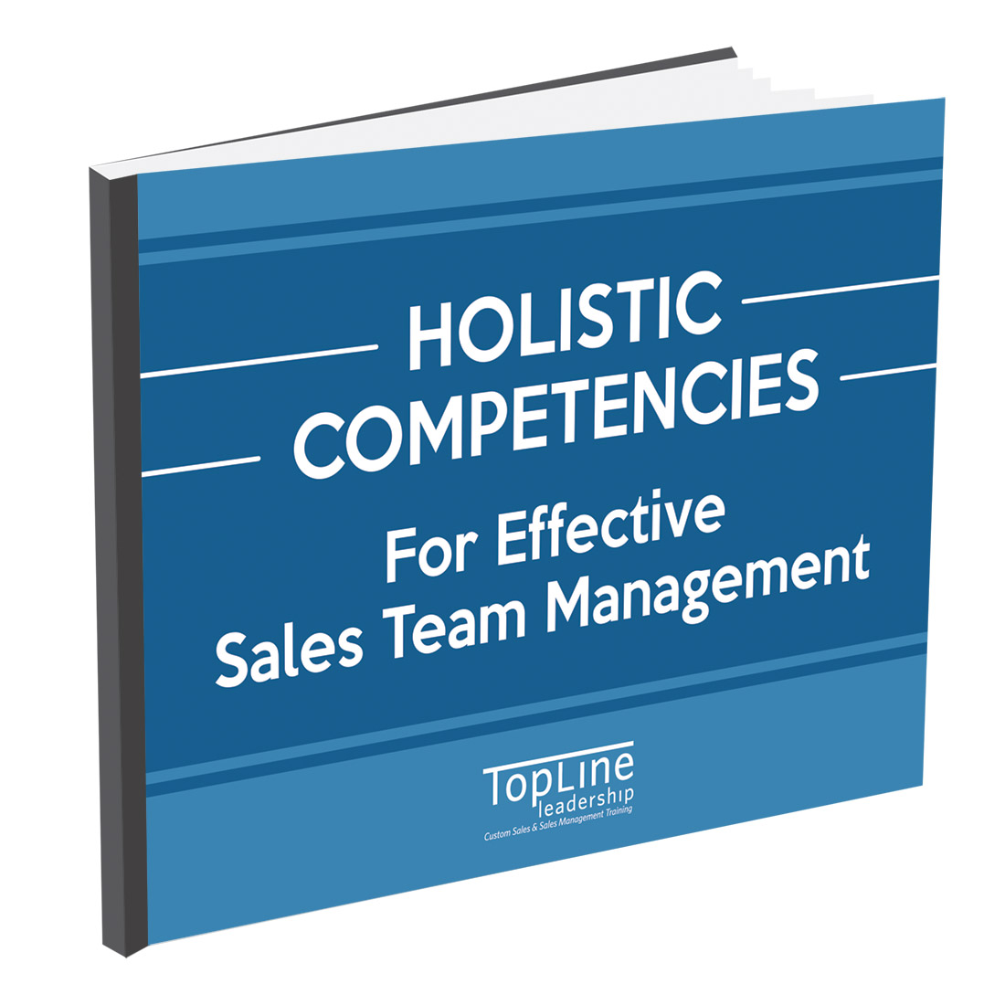 Holistic competencies for effective sales team management resources free download